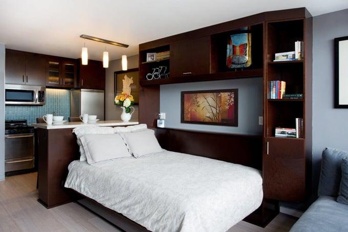 Open vertical tilt wall bed in San Francisco studio